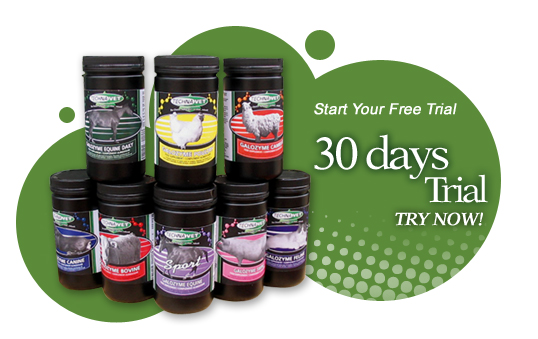 30days_trial